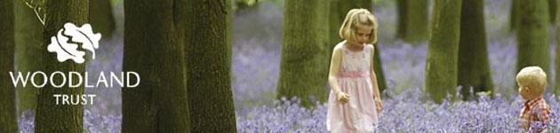 Woodland Trust: The Forest Manifesto